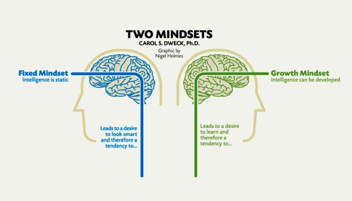 Fixed and growth mindset carol dweck