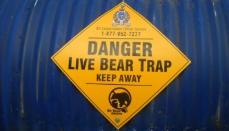 To Believe Or Not To Believe Conference Copying: Three Big Ole Bear Traps To Avoid (Part 2)
