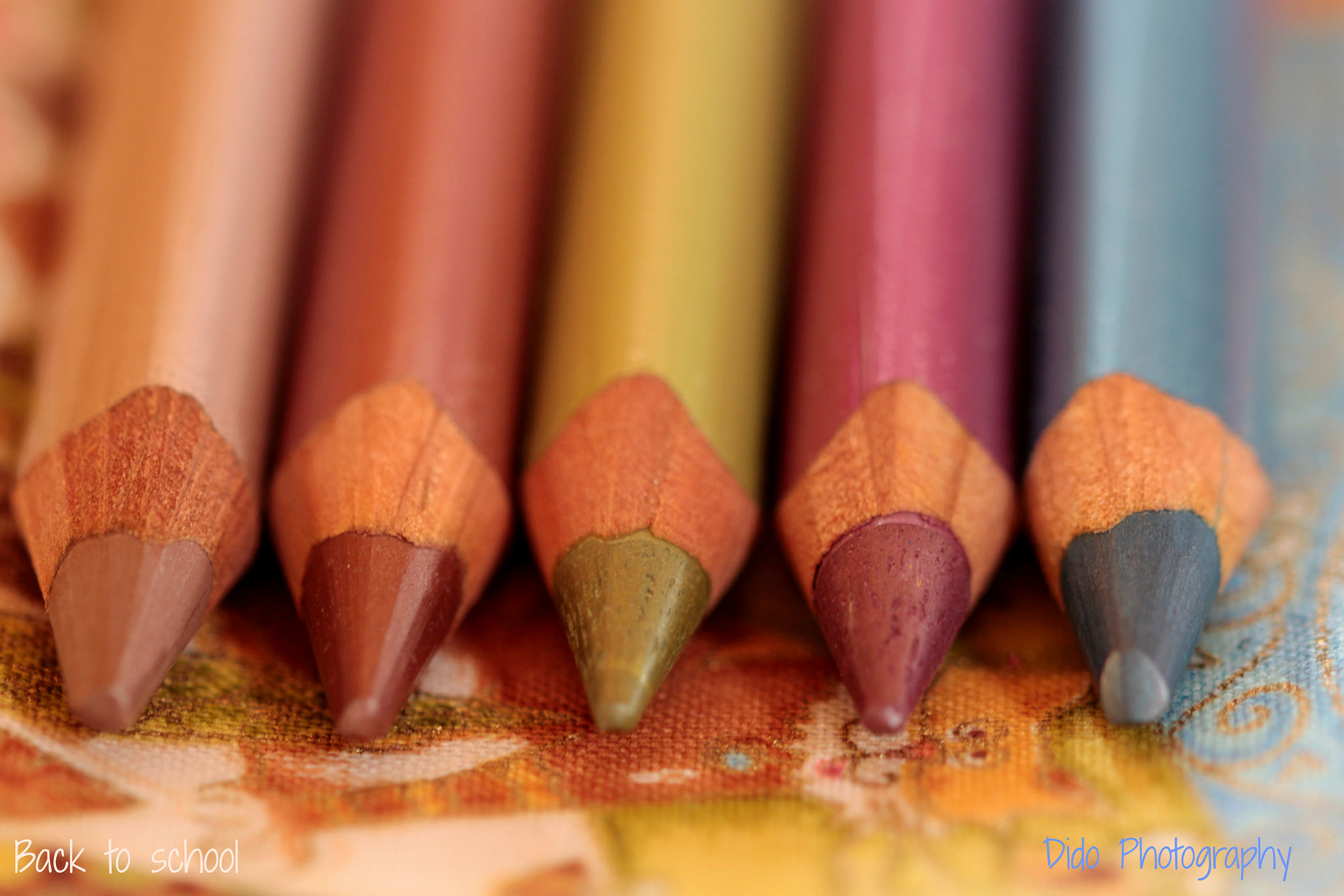 Back To School for Macro Mondays by Blandine L on flickr